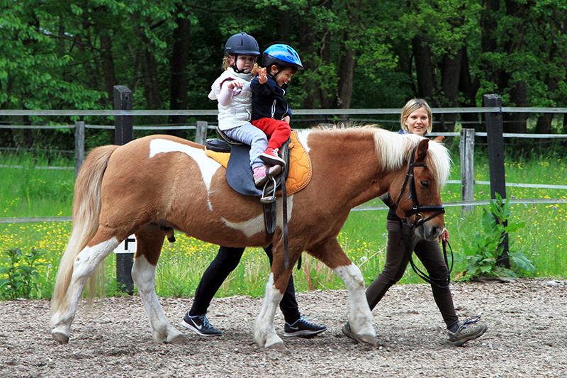 konjeniški klub