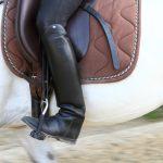 Koliko stane oprema za jahanje konja