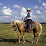 Dogodki in prireditve s konji v septembru