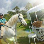 Kako je sedemletni fantek zaslužil za svojega konja