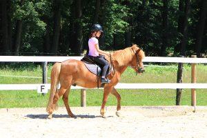 jahanje konj